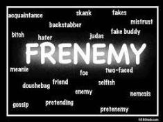 frenemy (1)