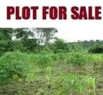 stolen land with my stolen money
